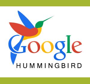 What is hummingbird google updates in seo