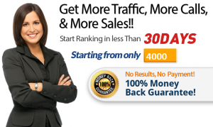 seorankexpert get more traffic