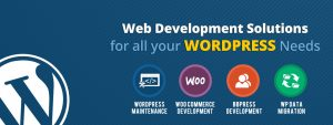 Website Development Services in Gurgaon